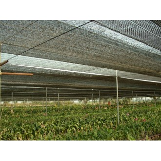 50% X 2M X 30M ORCHID NETTING (Green Swan Brand) / Jaring Hitam